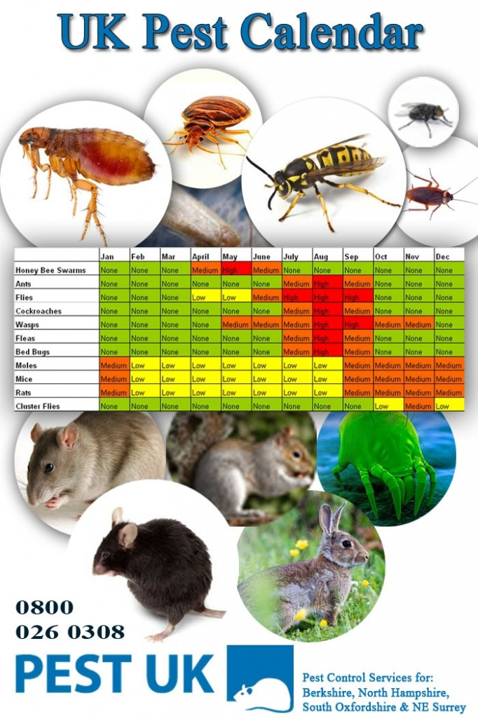 Which pests are prevalent in which months
