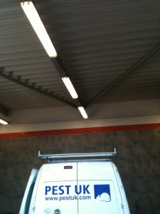 Pigeon Netting of canopy roof