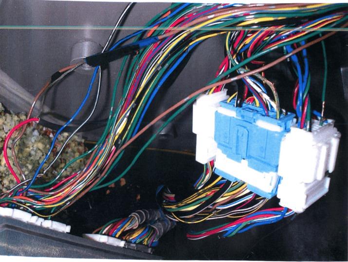 Rat Damage: Car | Pest UK