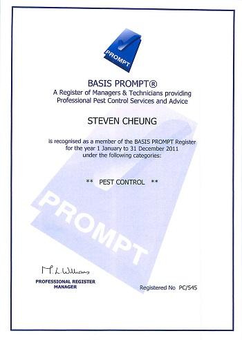 Prompt-Certificates