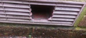 Plastic Air Brick Damaged by Rats