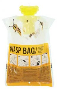 wasp trap bags